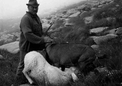 Italie, Piémont, chèvre et agneau | mai 1997