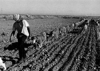 Espagne, Castille | septembre 1995