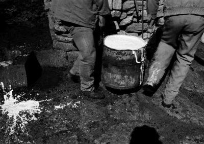 Grèce, Crète, traite des brebis | avril 2000