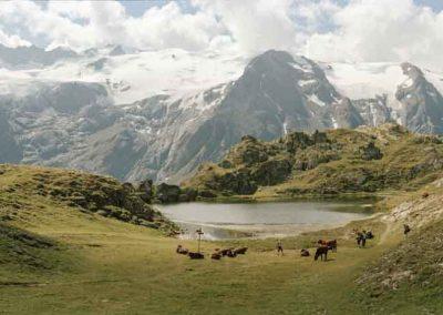 Hautes Alpes, Parc national des Écrins, La Grave   août 2013