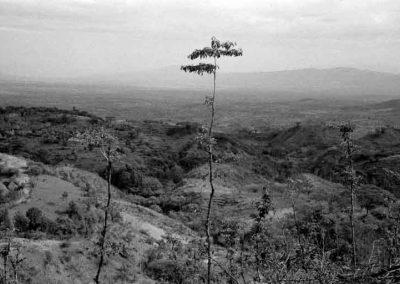 Ethiopie, Pays Omo   février 2004