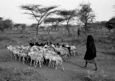 Ethiopie, Pays Kereyu   février 2004