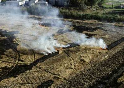 Commune d'Arles, brûlis de rizière | mars 2012