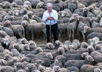 René Tavan, bergerie du Coucou | juin 2010